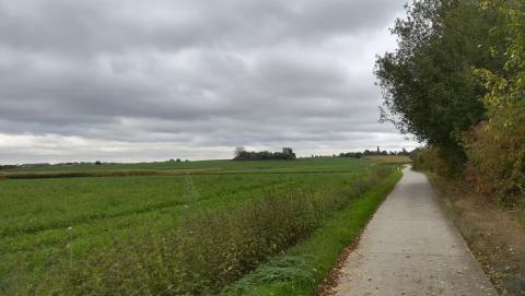 Foto toont Woluweveld bij grijs weer