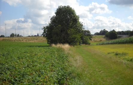 Woluweveld Vuilbeek Kleine Maelbeek7